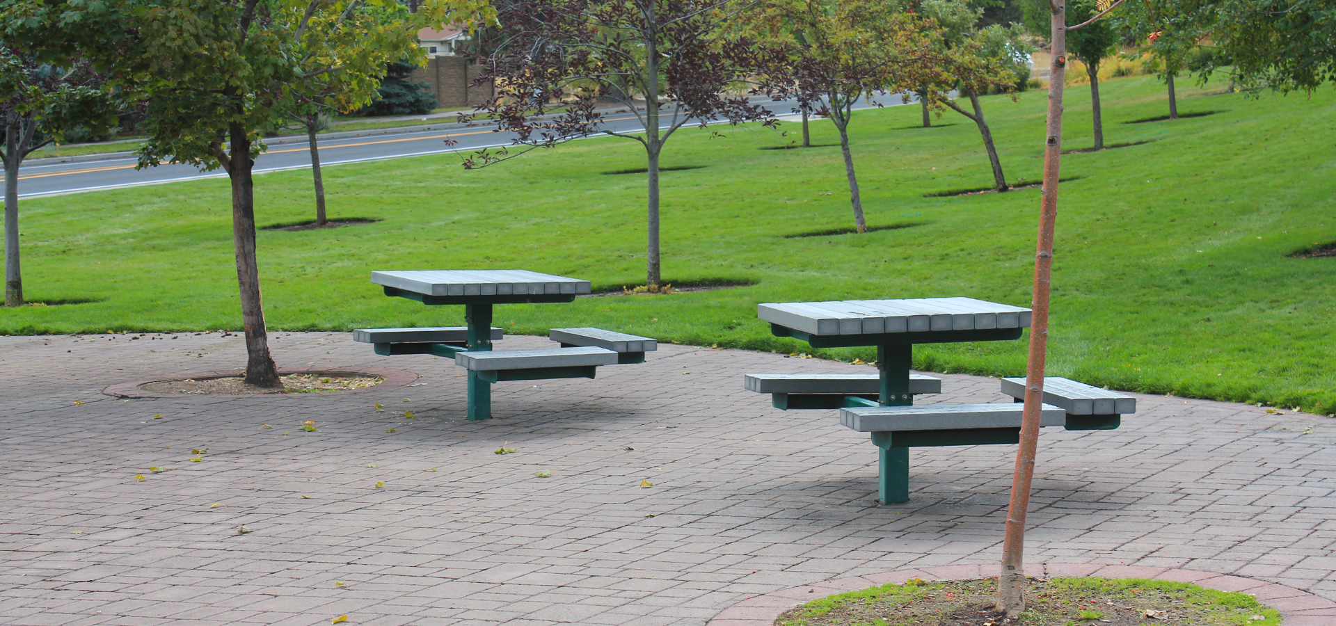 Blakely-Park-Picnic-Area