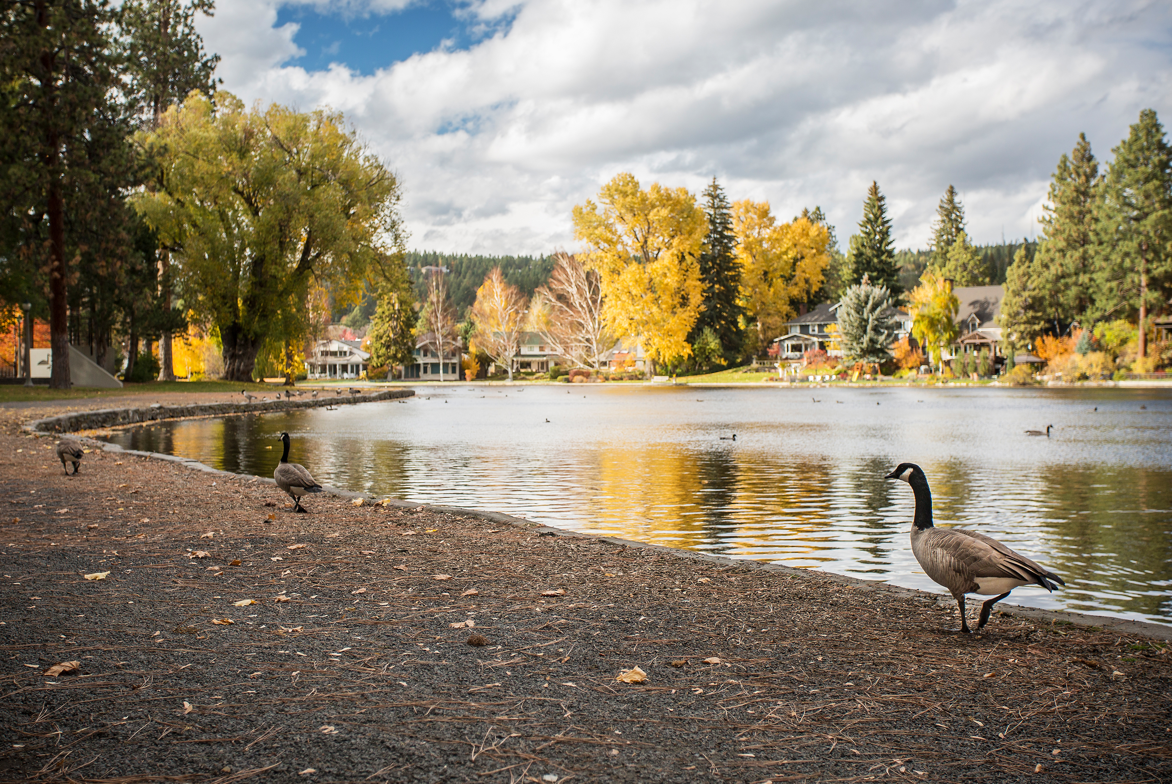 Drake Park And Mirror Pond Bend Park And Recreation District
