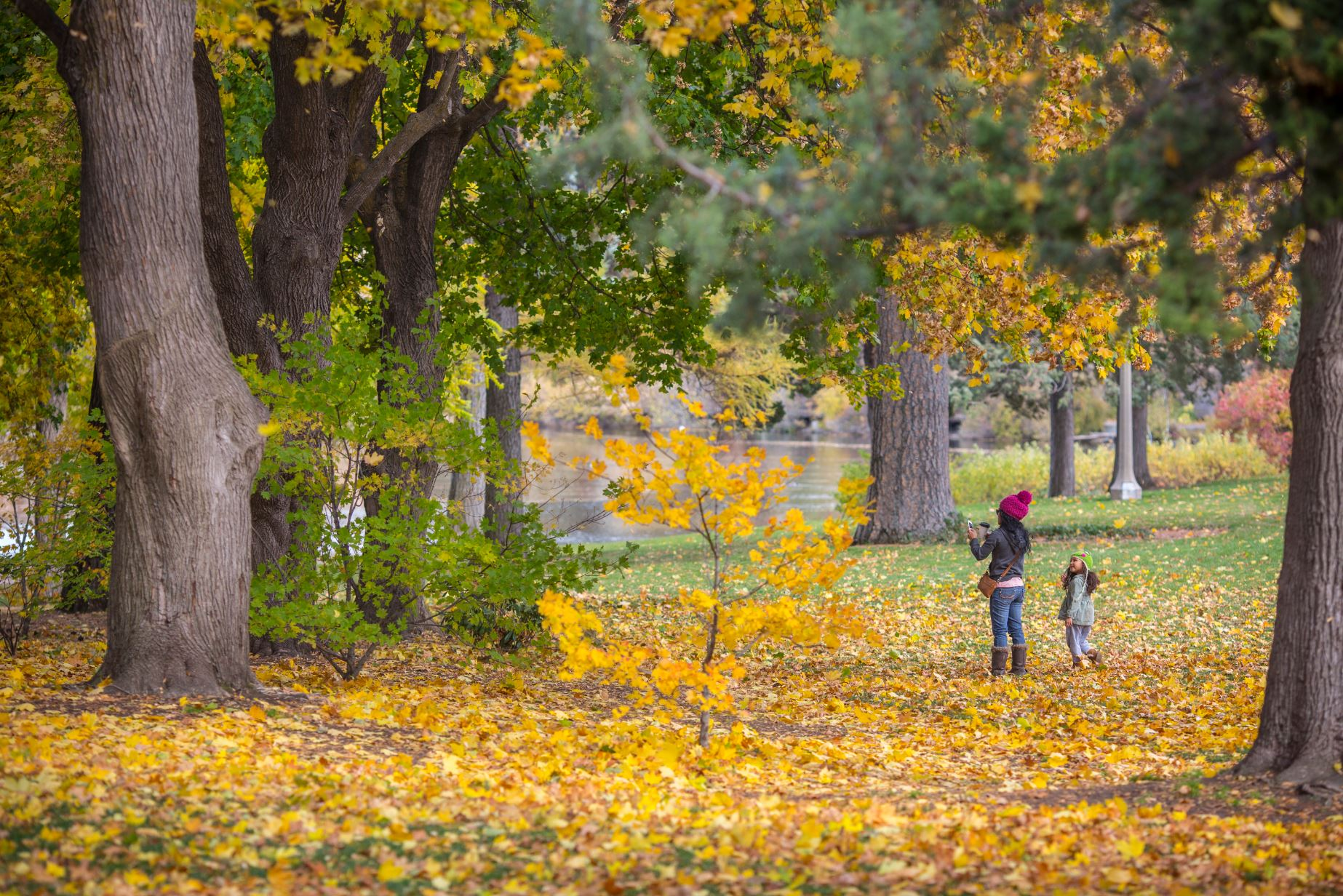 Fall Colors in Drake Park in Bend