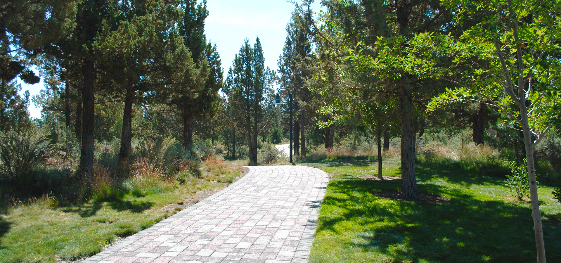 Larkspur-Park-Paved-Path