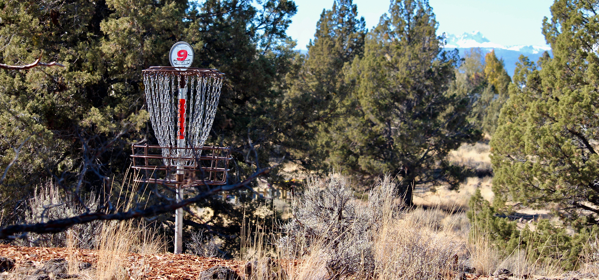Rockridge-Park-Disc-Golf-Hole