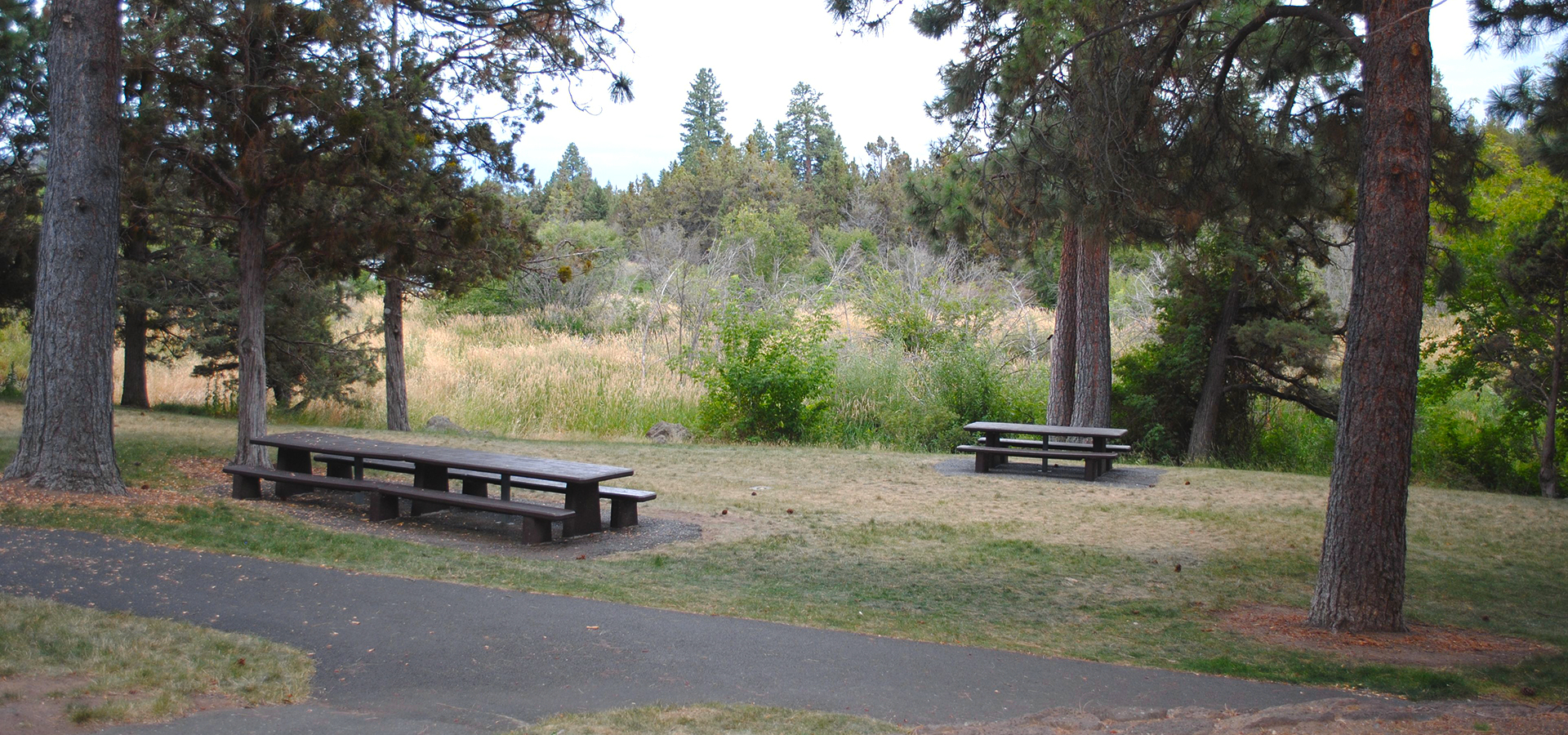 Sawsyer-Park-Picnic-Area