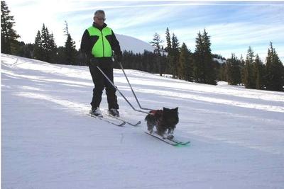 s_bob-wenger-skiing-600x400