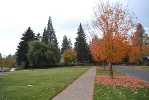 s_brooks-fall-2011-620x415