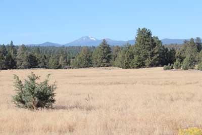 s_riley-ranch-meadow-400px