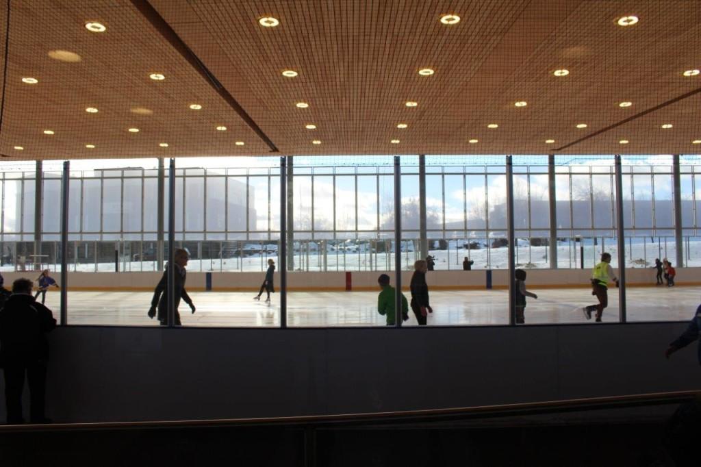 pavilion skater silhouettes