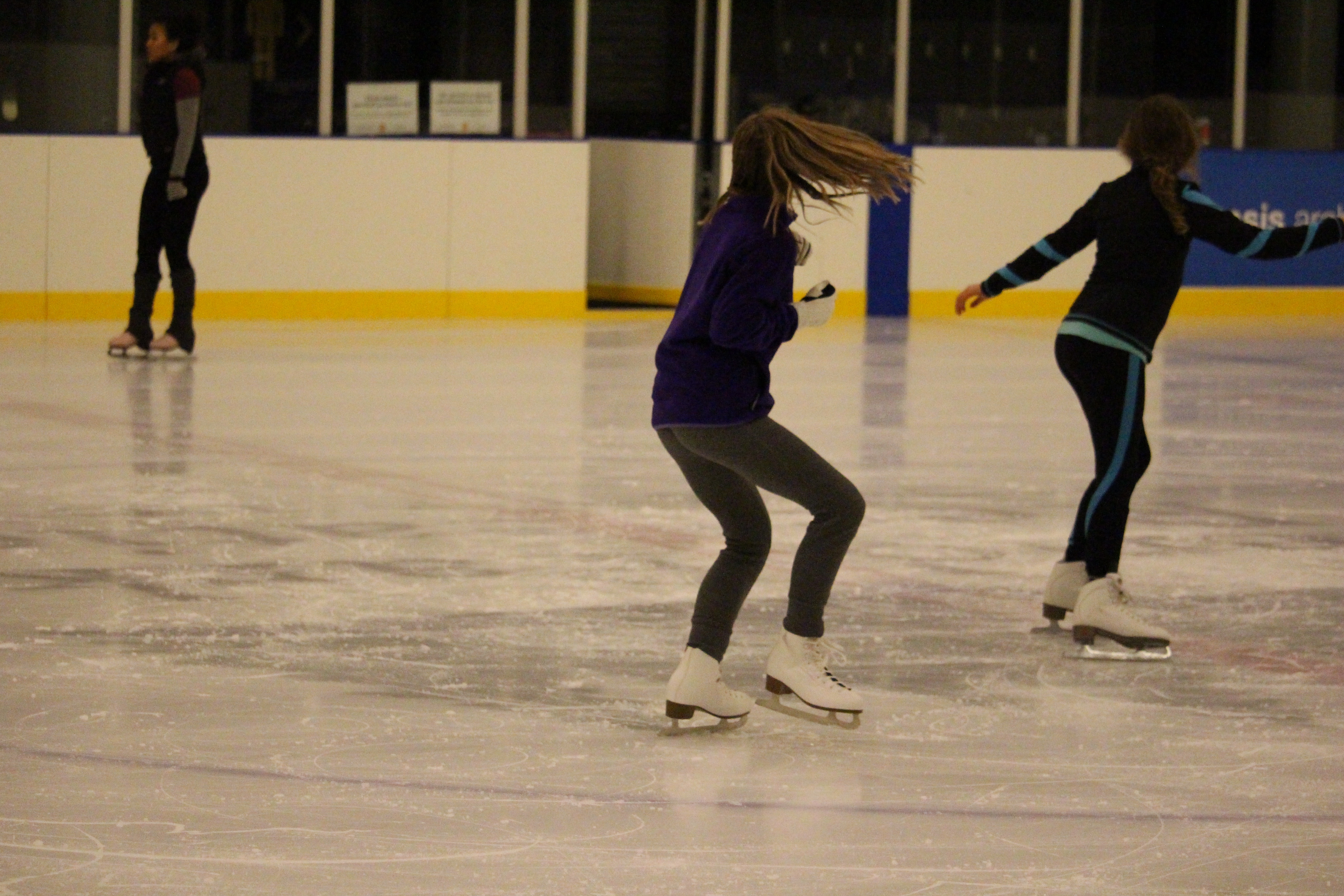 Ice Skating Lessons 012816- - 3