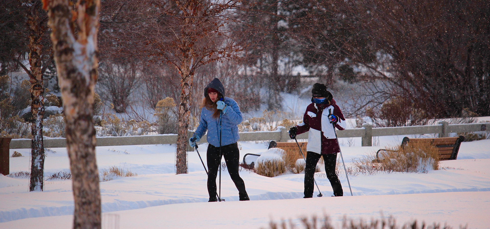 Riverbend-Park-Winter-XC-Skiing