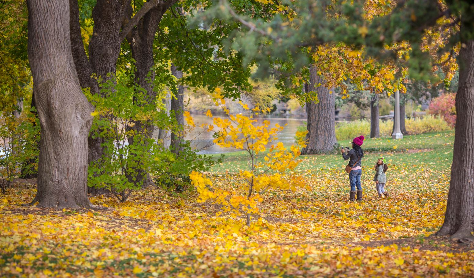 Fall-Colors-in-Bend-Parks