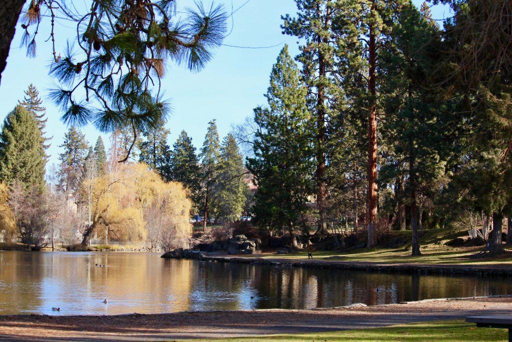 Deschutes River Trail Pioneer Reach Bend Parks