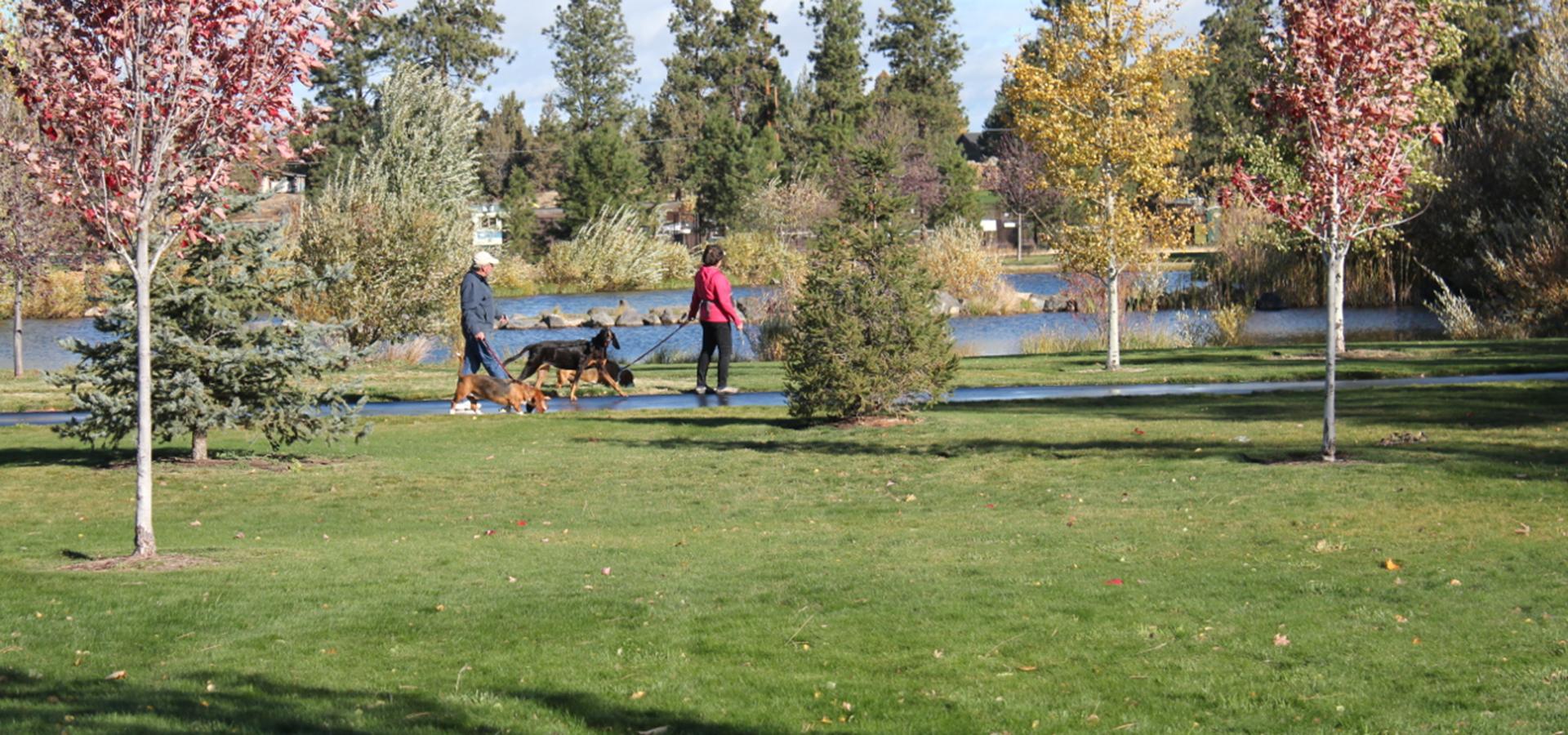 Pine Nursery Park Trail Bend And