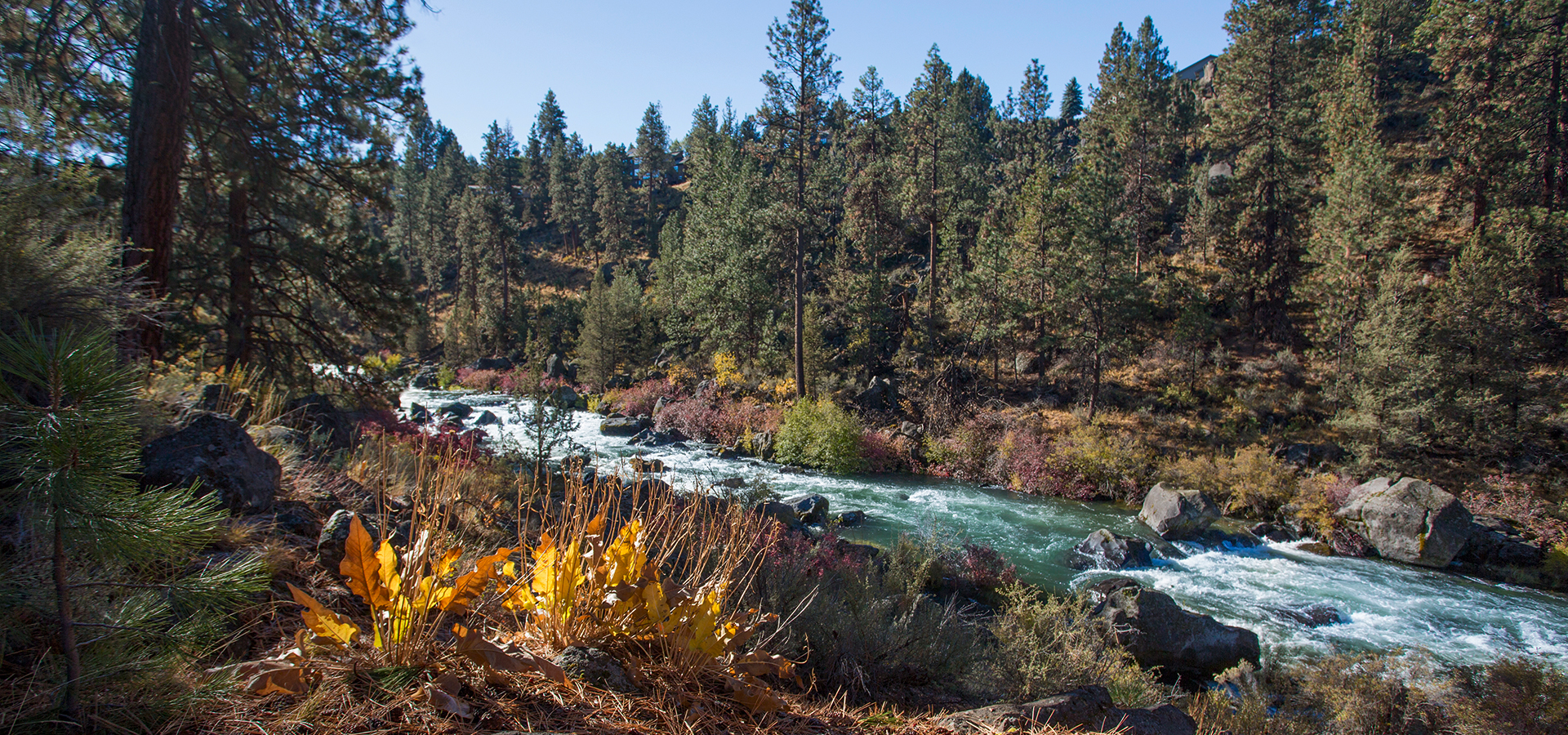Riley-Ranch-and-the-Deschutes-River