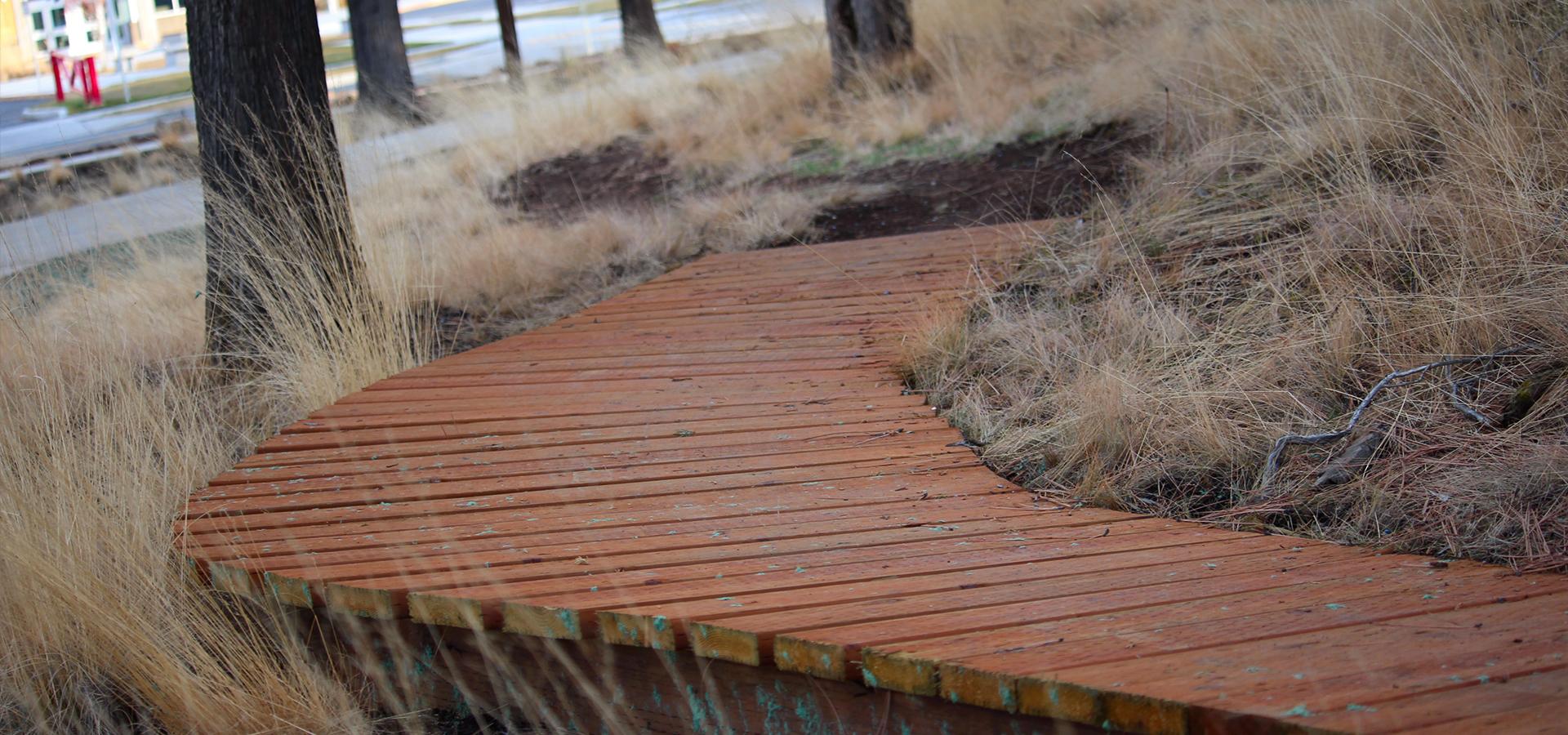Stone-Creek-Park-Bike-Skills-Boardwalk-Feature