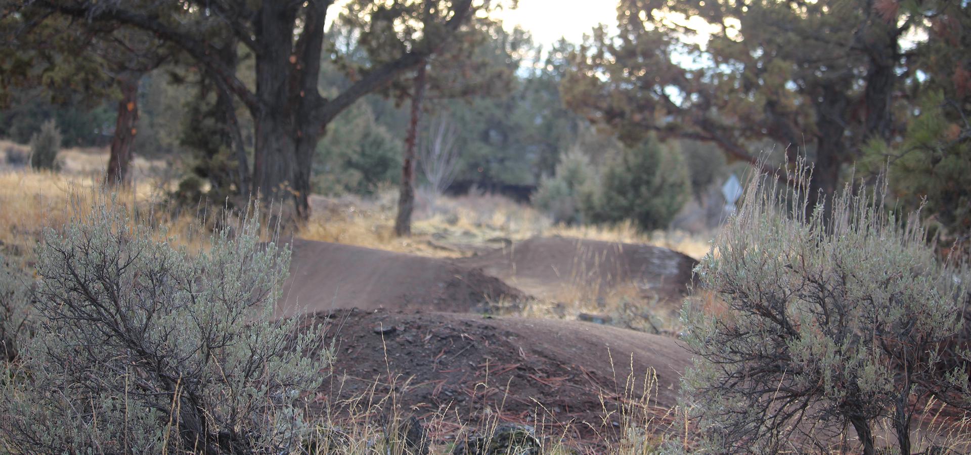 Stone-Creek-Park-Pump-Track