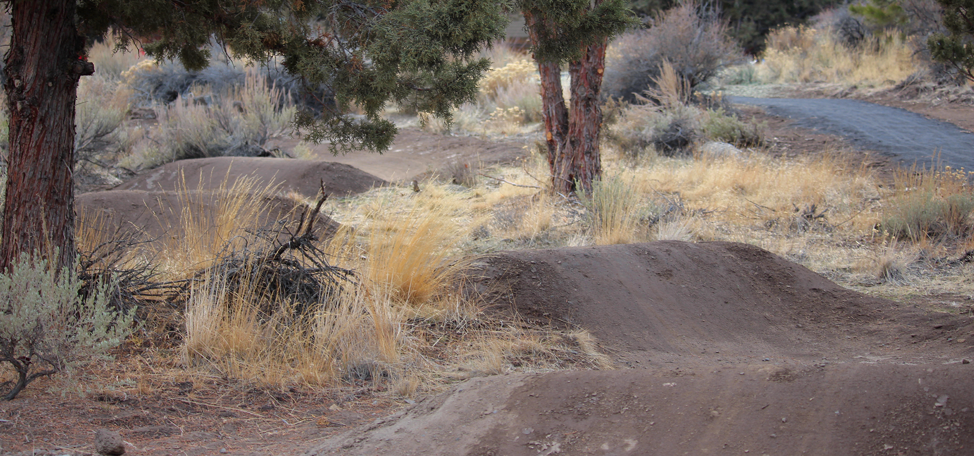 Stone-Creek-Park-Small-Pump-Track