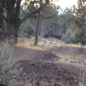 Image of the Stone Creek Park bicycle pump track in Bend, Oregon.