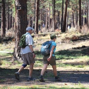 Image of an adult couple hiking in Shevlin Park for an adult outdoor hiking program.