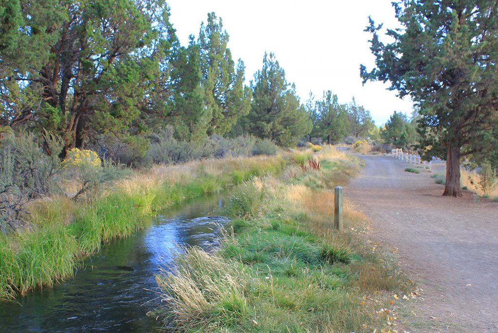 Big Sky Park Trail Bend Park And Recreation District