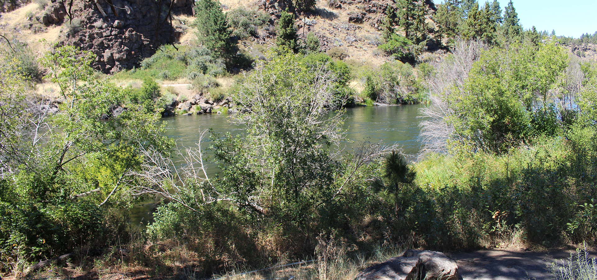 Deschutes River at First Street Rapids Park