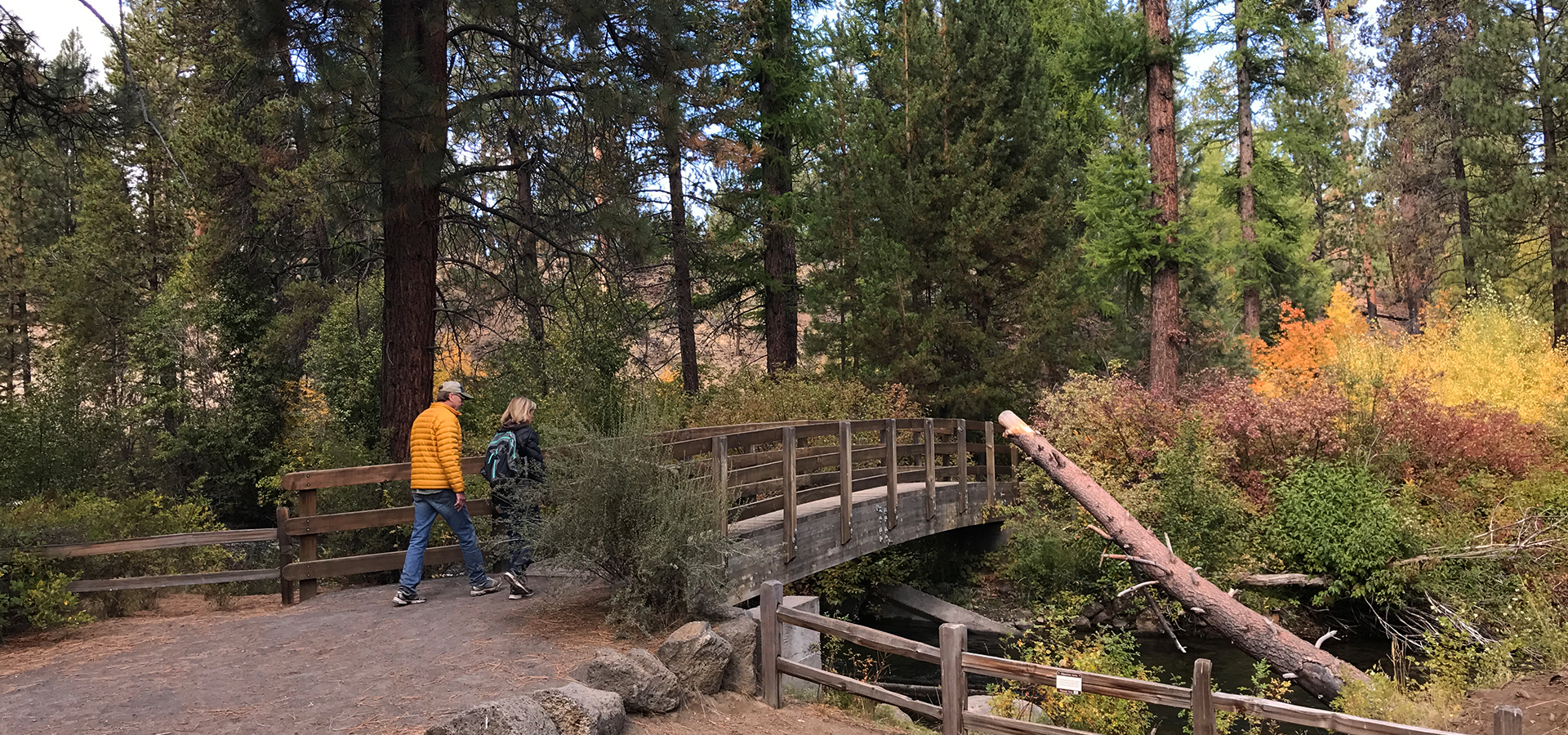 Image of a foot bridge and soft-surface trail crossing Tummalo Creek in Shevlin Park.