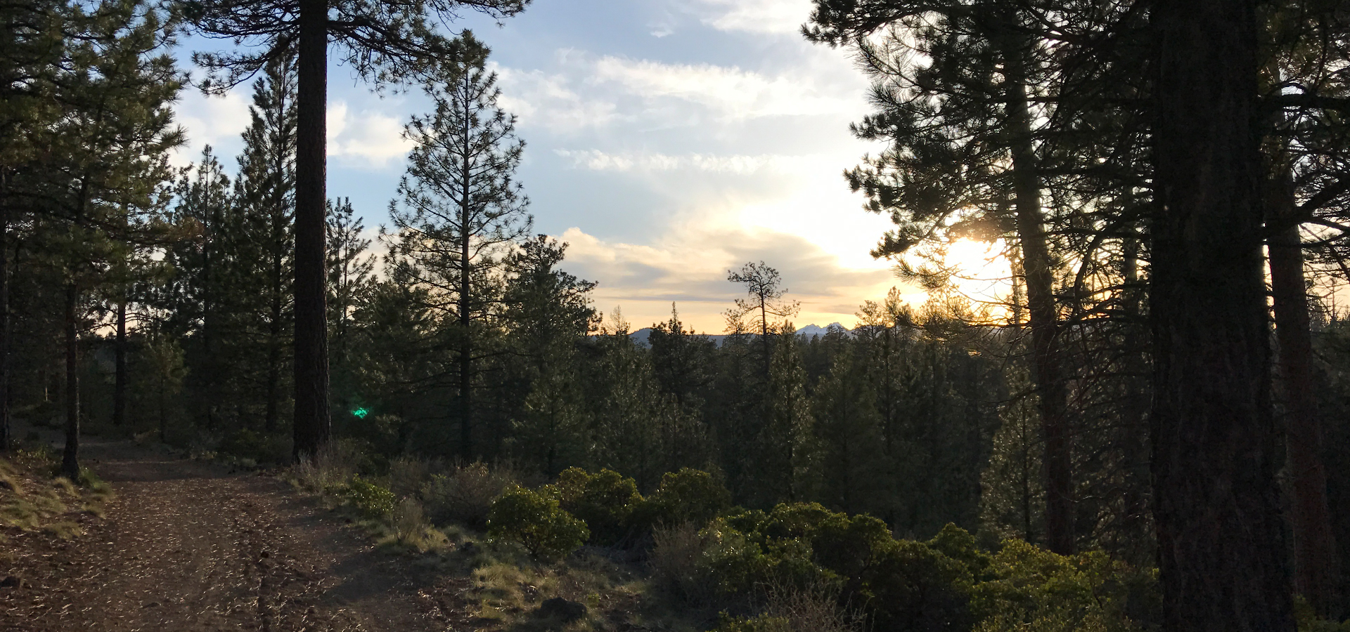 Image of a sun setting around the Cascade mountains as viewed from a trail in Shevlin Park.