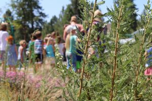Image of a Discover Nature Day kid's event in Bend, Oreogn.