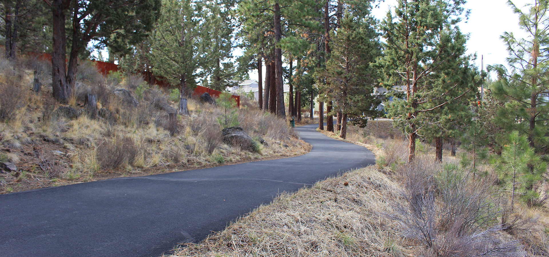 Image of the Cascades Highland Trail in Bend, Oregon.