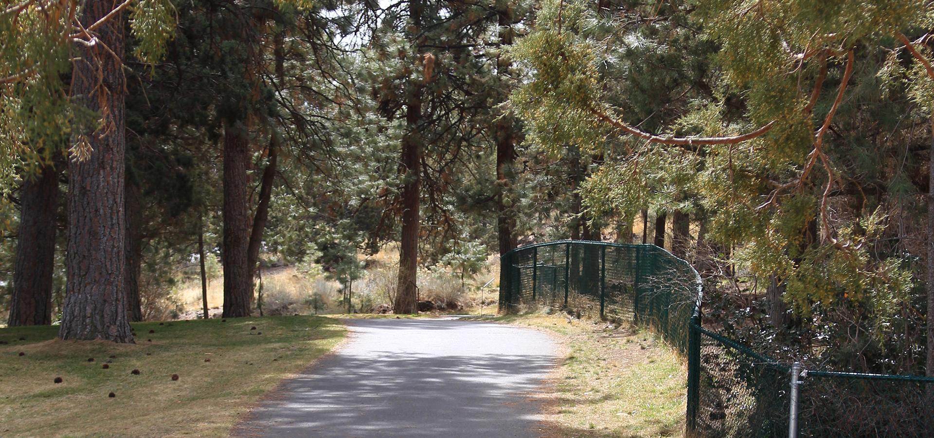 Image of Coyner Trail in Bend, Oregon.