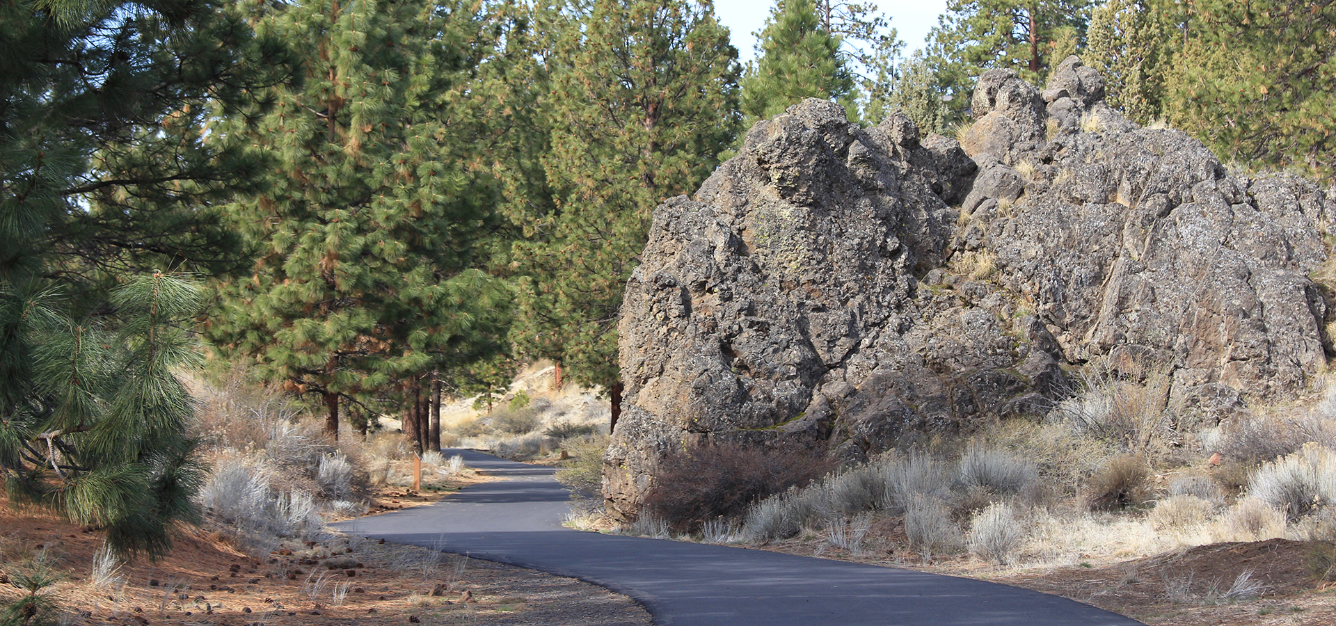 Image of the West Bend Trail in Bend, Oregon.