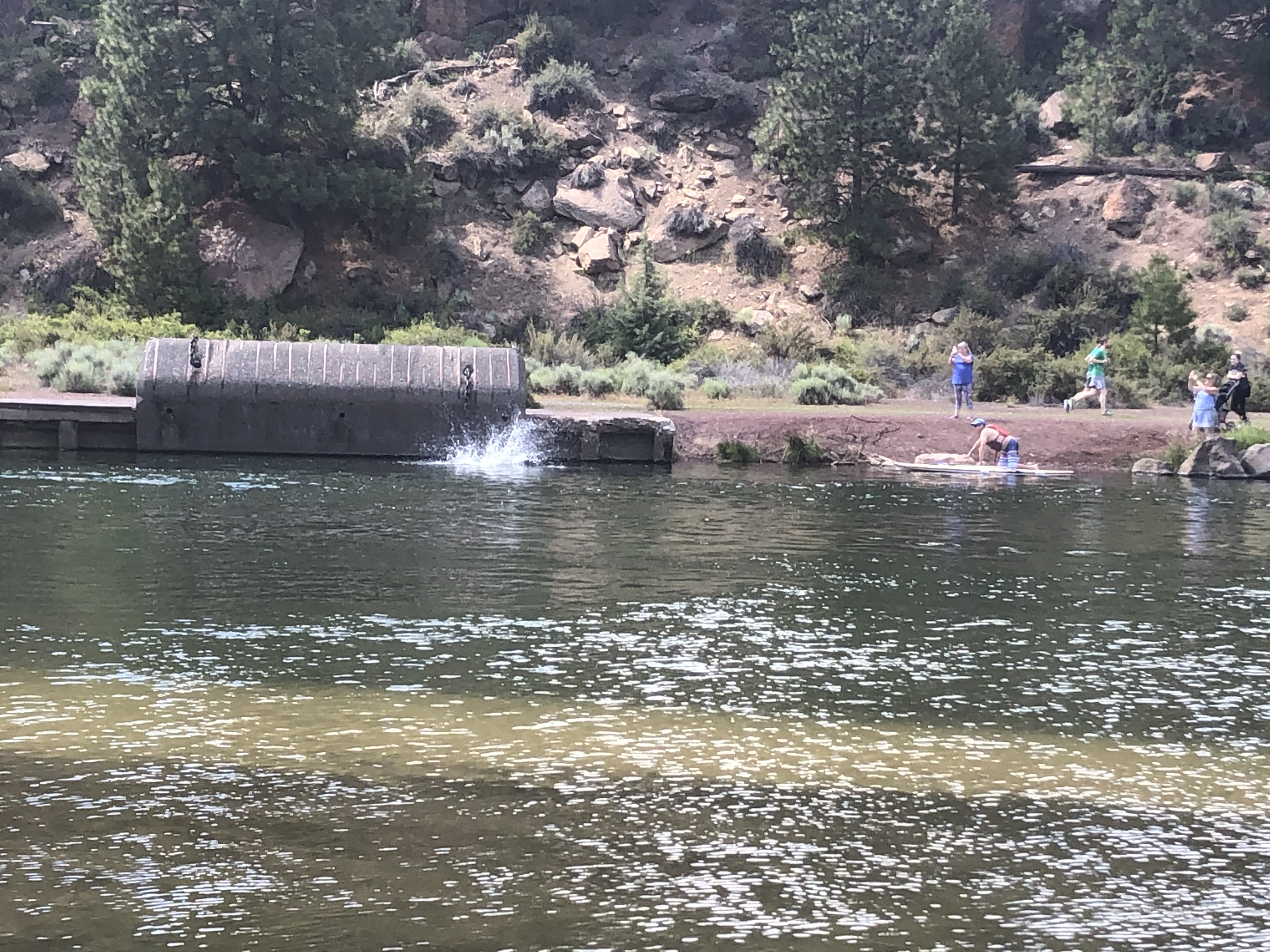 Image of the Deschutes River bank in Farewell Bend Park along the Deschutes River Trail.