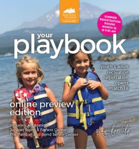 Image of the cover page of the Online Summer 2019 Playbook