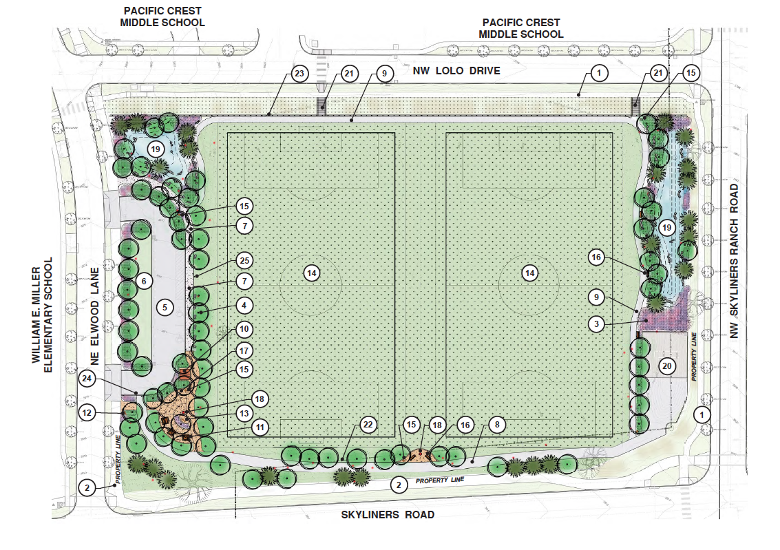 Concept drawing for Pacific Crest field project.