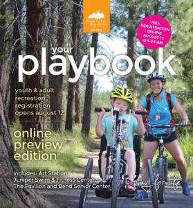 Image of the cover of the online playbook.