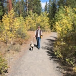 Woman walking in Shevlin Park with gold aspens