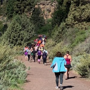 Image showing a Walk/Run-Through Event through Farewell Bend Park
