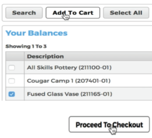 Image demonstrating the Proceed to Checkout button.