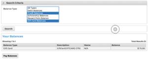 Screenshot demonstrating the credit balances page.