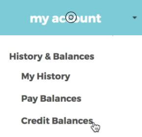 Image demonstrating the credit balances button in the registration site menu.