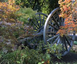"""The """"Big Wheel"""" in Drake Park - 2019"""