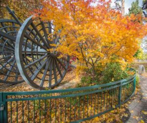 The Big Wheel with fall leaves in Drake Park