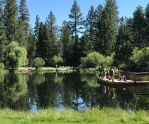 People fishing in the pond at Shevlin Park