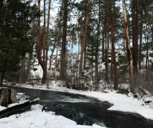Snow and Tumalo Creek in Shevlin Park