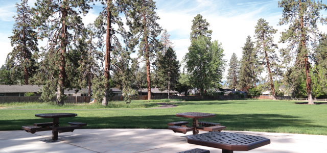 Image of Goodrich Park Picnic Area and Lawn.